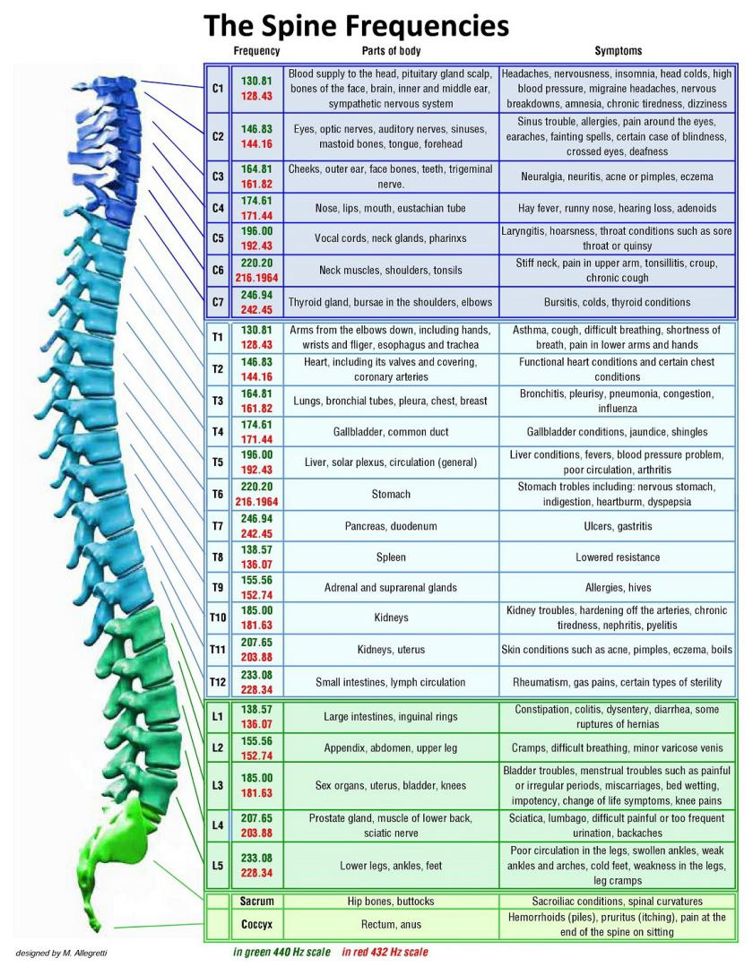 This Picture Shows The Corresponding Frequency Of Each Bone Spine And You Can Perform Healing